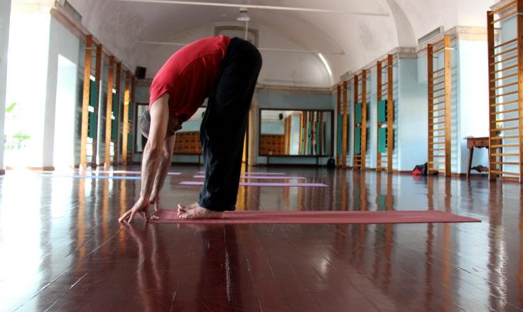 16. Uthanasana corpo dobrado sobre si, mãos ao chão, topo da cabeça aponta para o chão