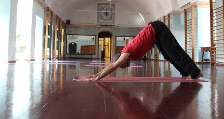 """8. Adho mukha shvanasana posição de """"V"""" invertido"""